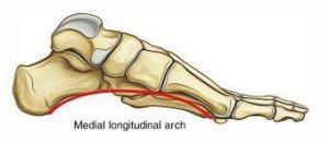 بررسي ساختار قوس كف پا